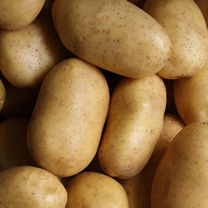 Älskade knölar – Potatis!