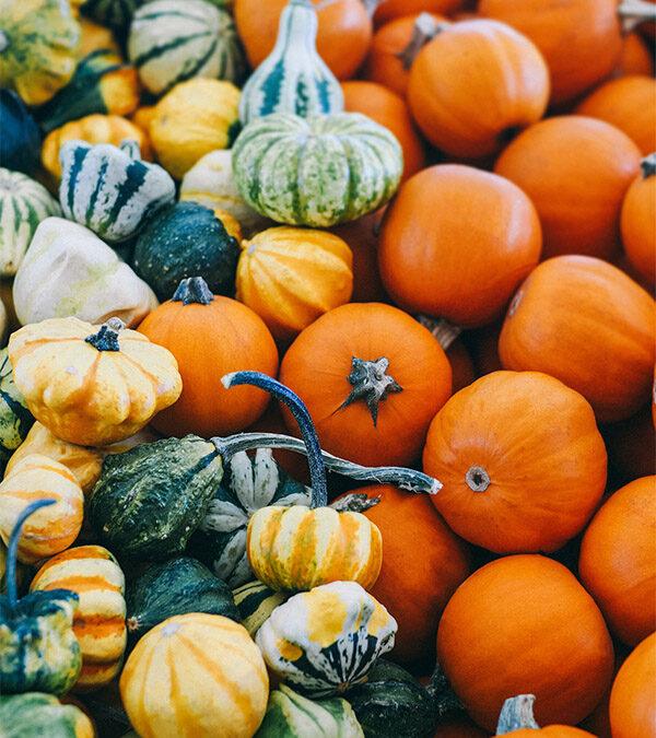 Välkommen härliga oktober månad!